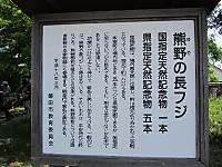 12_20140504_701293