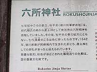 Img_8011_okazaki