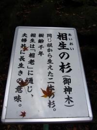 20111211_2167527
